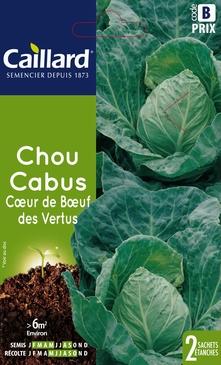 GRAINES DE CHOU CABUS