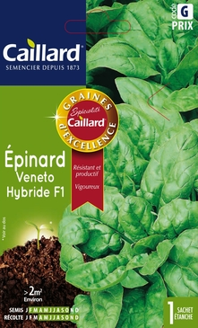 GRAINES D'EPINARD VENETO HYBRIDE F1 - 10 GR