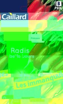 GRAINES DE RADIS