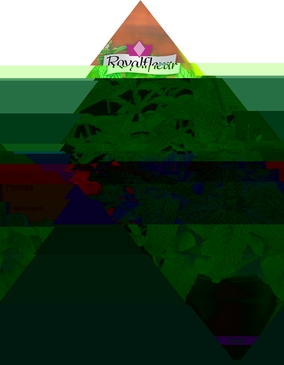 GRAINES AROMATES - MENTHE POIVREE - 0,5G